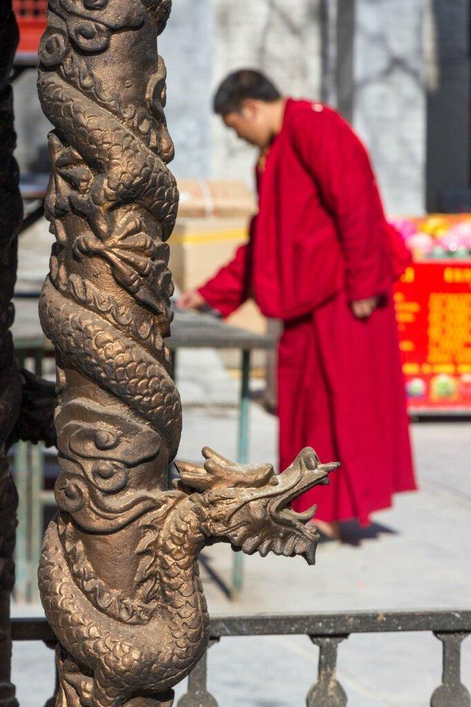 Дракон, монах, Бадачу
