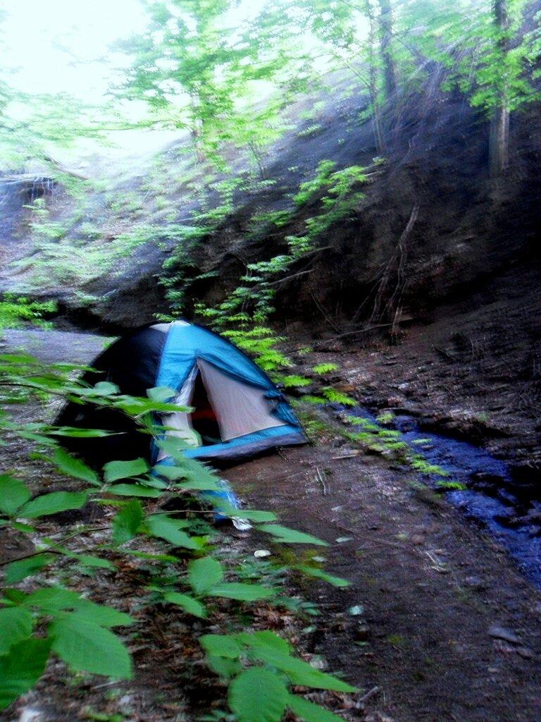 Утром ранним, палатка у ручья ... SAM_6647.JPG