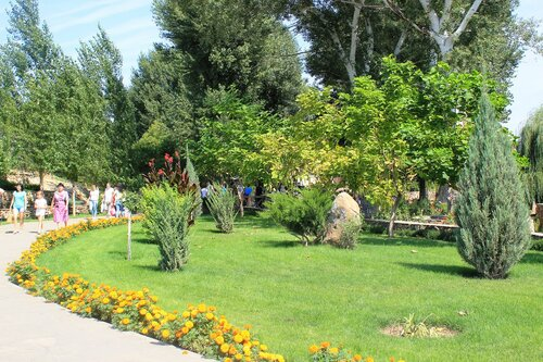 Зеленые лужайки и цветы