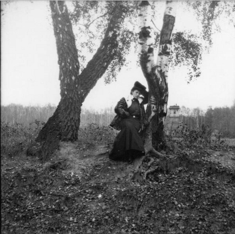 Прогулка в Петровский парк и Соломенную сторожку. «Тина сидит около дерева»