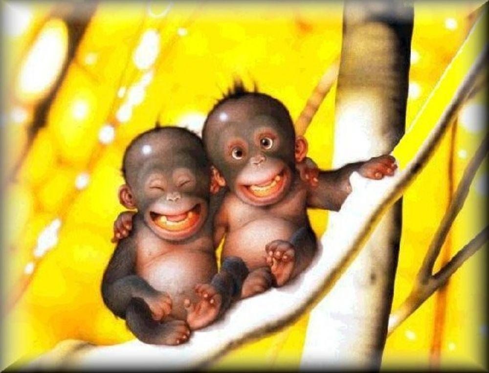 Открытка. С днем улыбки! Улыбчивые обезьянки