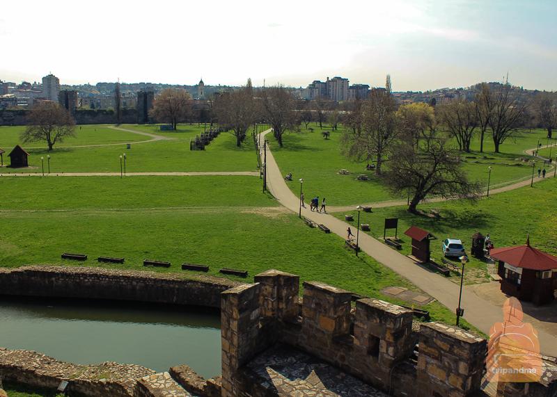 Смедеревская крепость весной