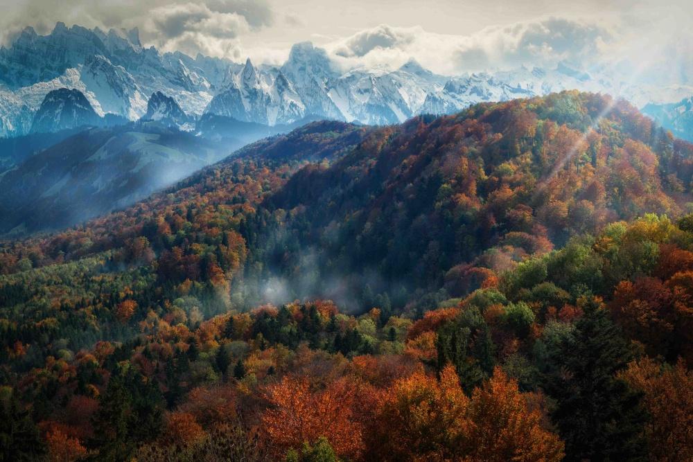 © picxis  Покрытый листьями дом, Уэльс