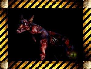 Враги Resident Evil Code: Veronica 0_154bc0_32517780_M