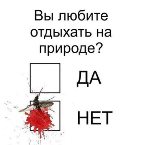 0_e18e9_b5a0673b_orig.jpg