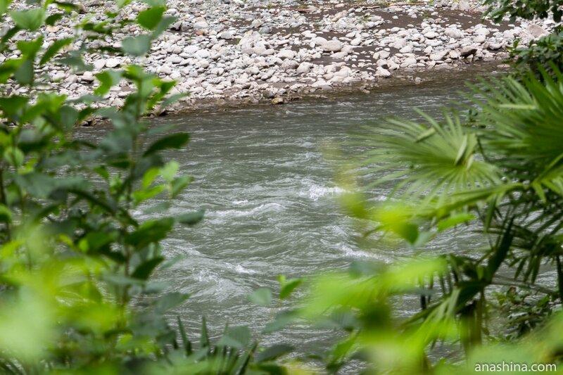 Река Мзымта, Сочи