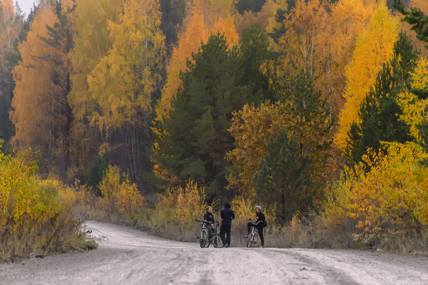 Снимок 31. Передышка. Телеобъектив Nikon 70-300, «сжимающий перспективу», позволил показать то, насколько высокие деревья в уральской тайге. Как мы поехали в село Мраморское, чтобы увидеть мраморный карьер. 1/500, 8.0, 5000, 280.
