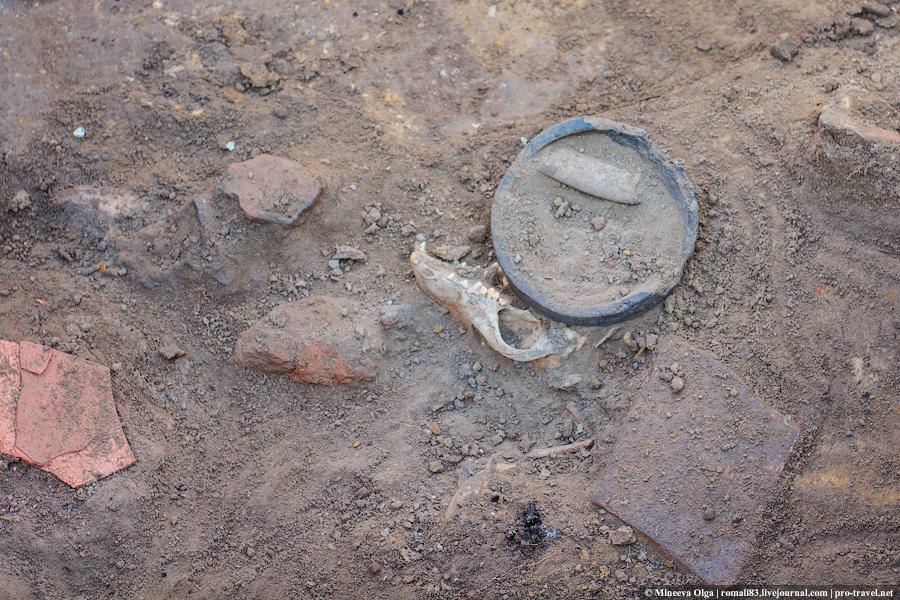 Раскопки на Таманском полуострове