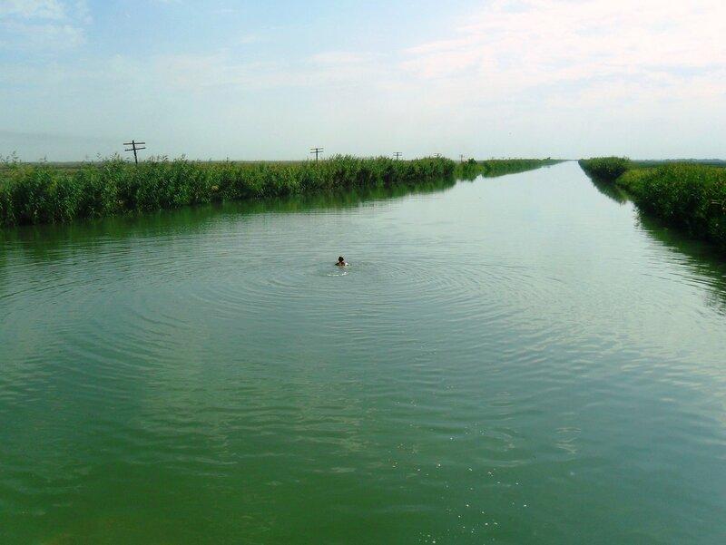 Водная дорога, уходящая в даль ... SAM_3514.JPG