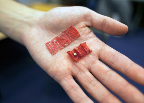 Проглоченные батарейки поможет достать оригами-робот