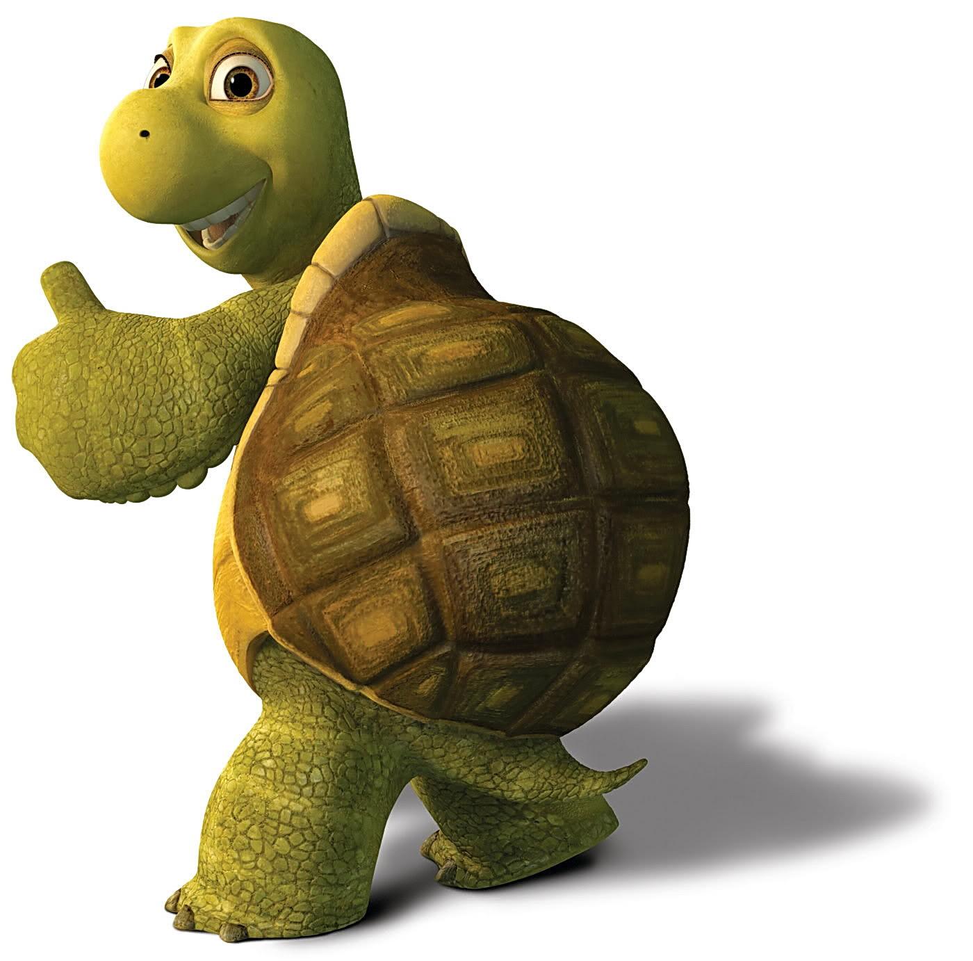 сейчас, веселая черепаха картинки шарфы вышивкой