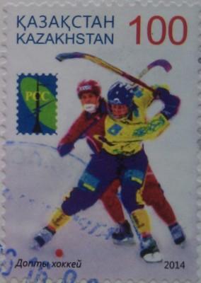 2014(15) № 919 РСС Зимние виды спорта хоккей 100