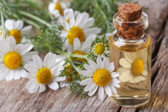 9 природных ароматов, способных изменить наше настроение