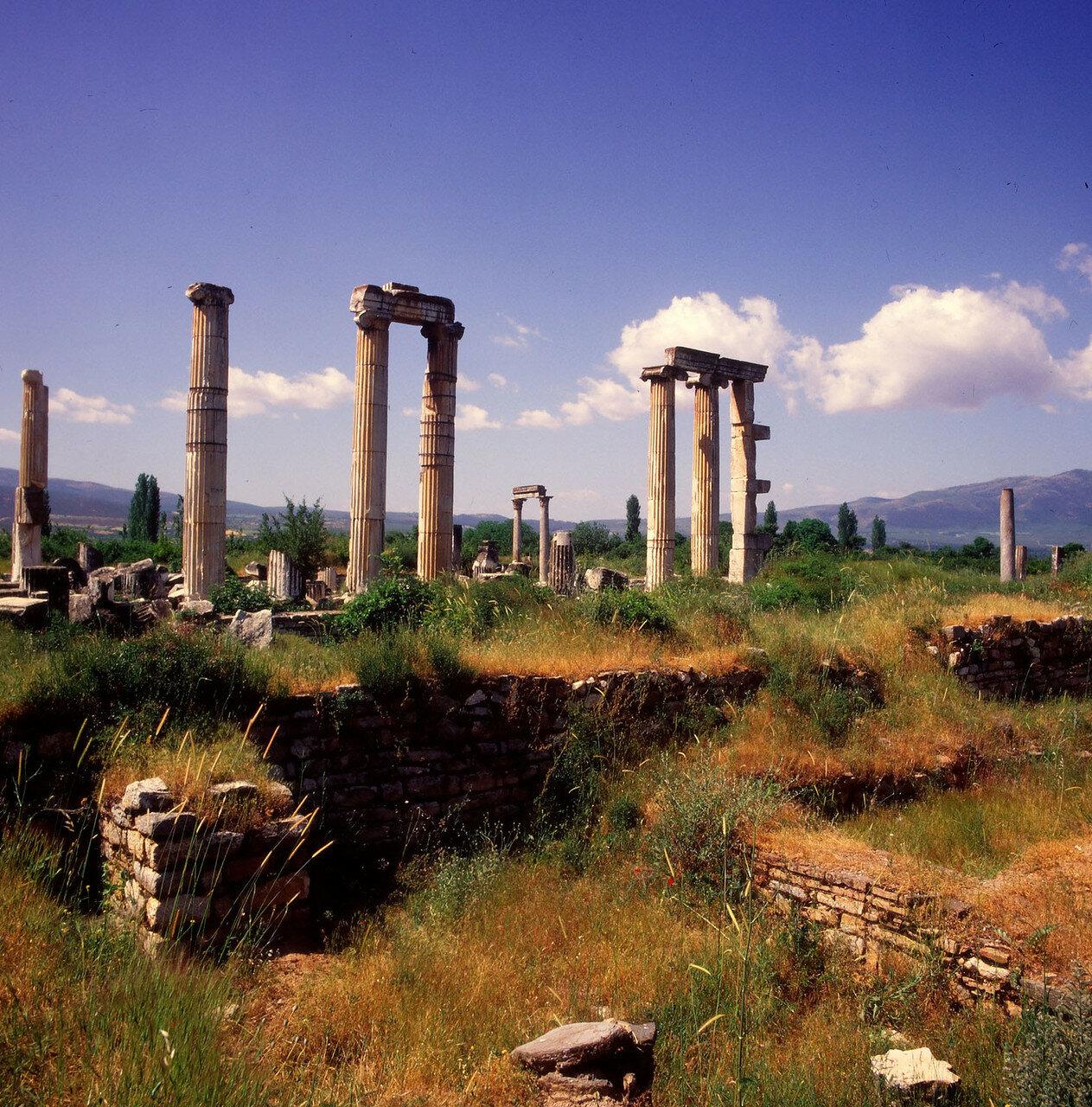 Афродисиас. Храм Афродиты