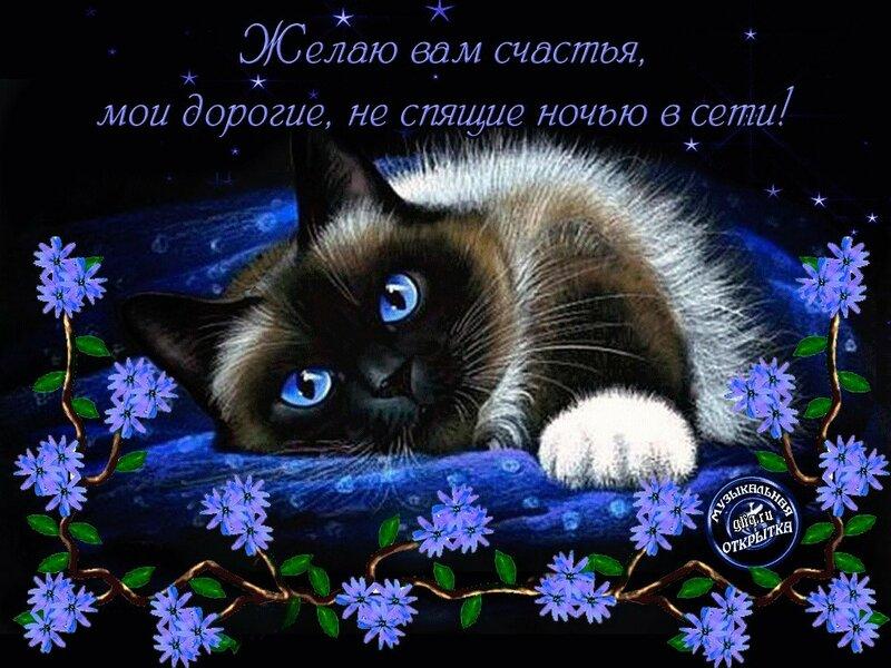 Спасибо доброй ночи открытка, пожелание спокойной ночи