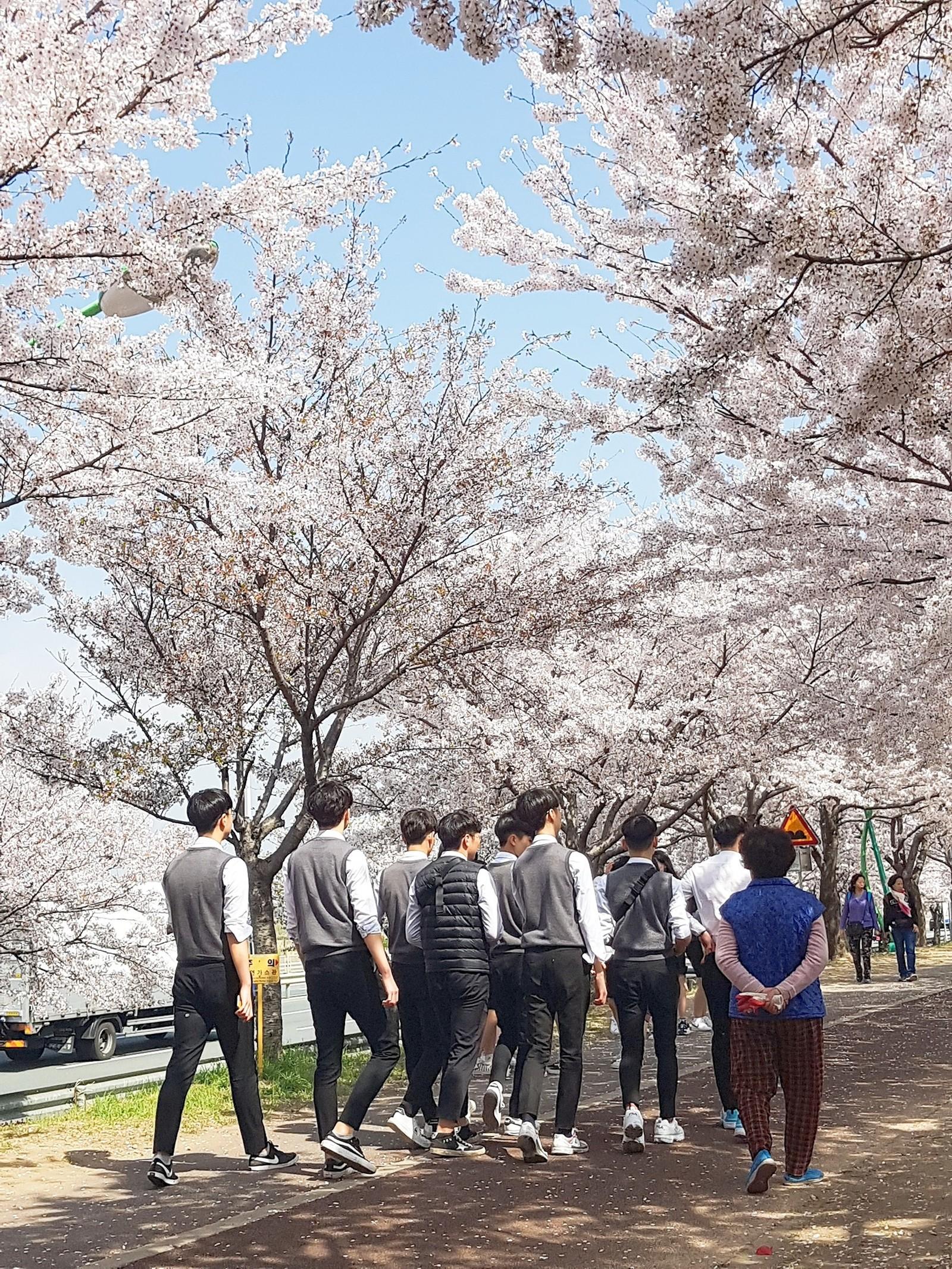 Корея. Весенний пост.
