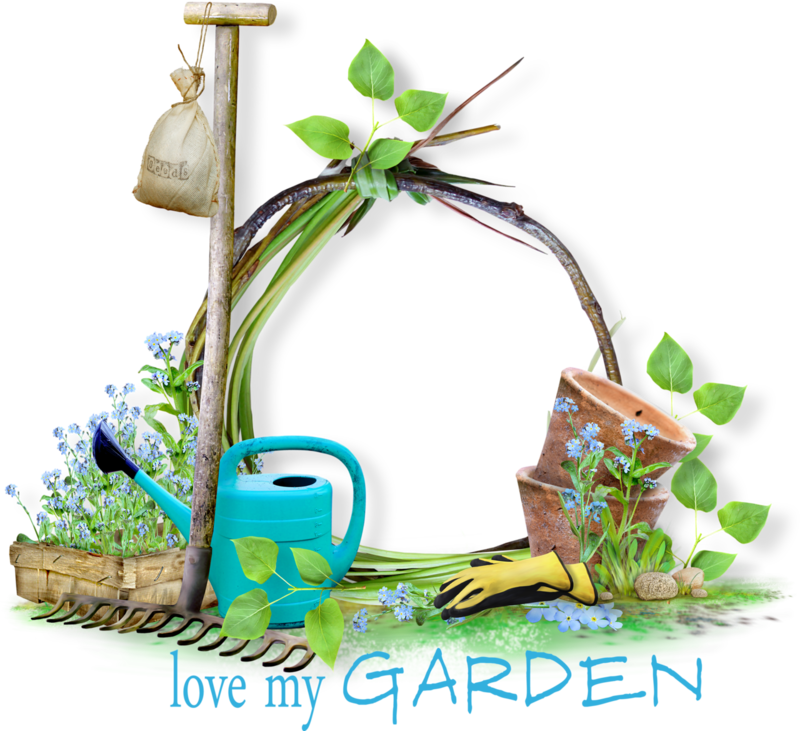 SeedlingInTheGarden_Agnesingap_cl (4).png
