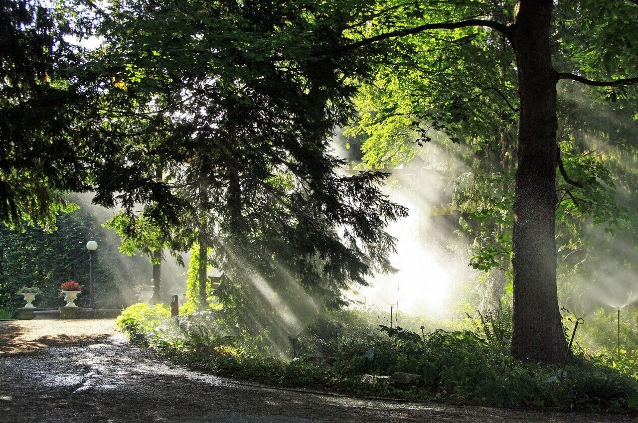 Вода и солнце день чудесный