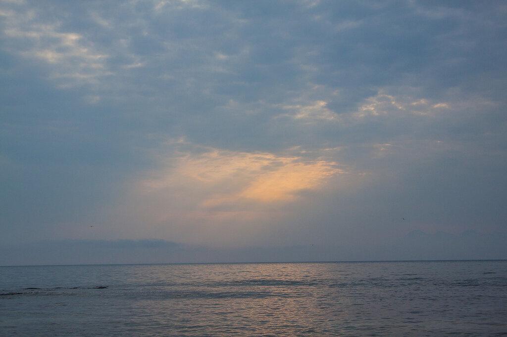 20110621-IMG_0827.jpg