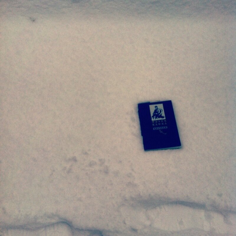 Дневники Кафки на снегу