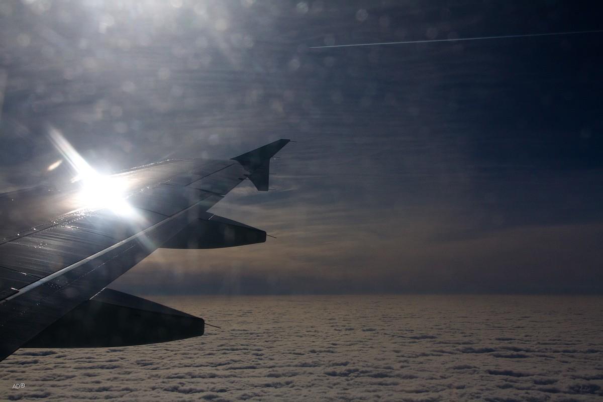 Авиаперелет Кишинев-Москва 2013-03-31