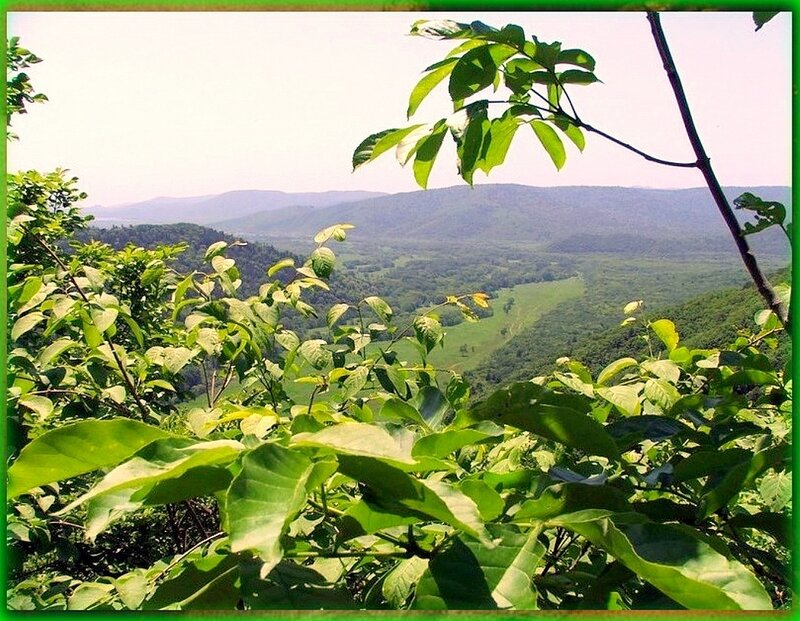 Природа, пейзаж, фото из интернета (187).jpg