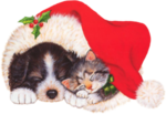 Christmaspuppkitty01_dhedey.png