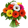 http://img-fotki.yandex.ru/get/9739/97761520.394/0_8b1f5_13d9fba6_L.png