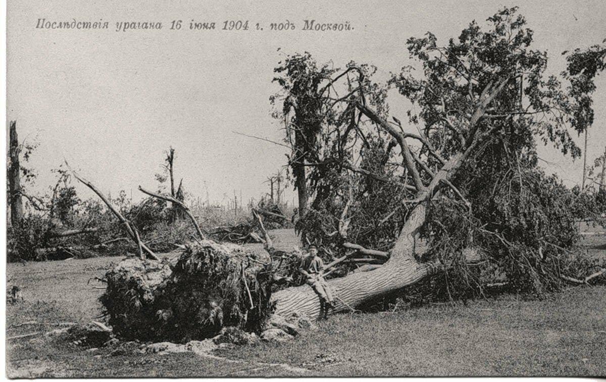 Последствия урагана 16 июня 1904