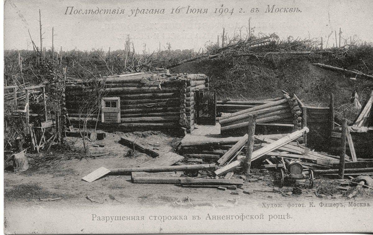 Последствия урагана 16 июня 1904 г. Разрушенная сторожка в Анненгофской роще
