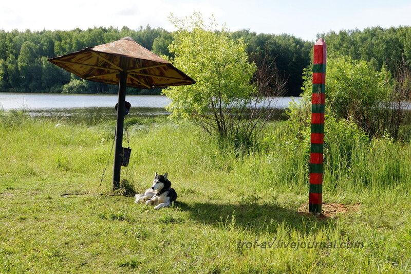 Караульная собака. 22 июня, реконструкция начало ВОВ в Кубинке