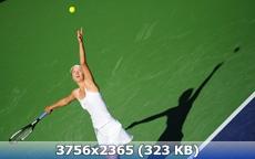 http://img-fotki.yandex.ru/get/9740/247322501.16/0_1637a8_8ebddab7_orig.jpg