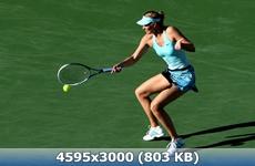 http://img-fotki.yandex.ru/get/9740/247322501.21/0_166366_561b9c63_orig.jpg