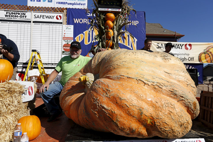 1. Хаф Мун бей, Калифорния, 12 октября 2015. Таких гигантов на легковой точно не увезешь к месту сор