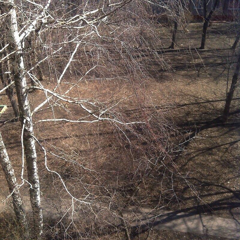 Апрель со снегом и без