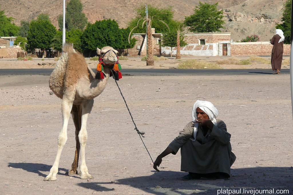 по дороге в Луксор