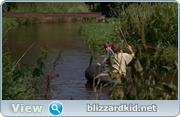 http//img-fotki.yandex.ru/get/9742/26874611.9/0_cf580_f162394d_orig.jpg