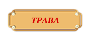 трава.png
