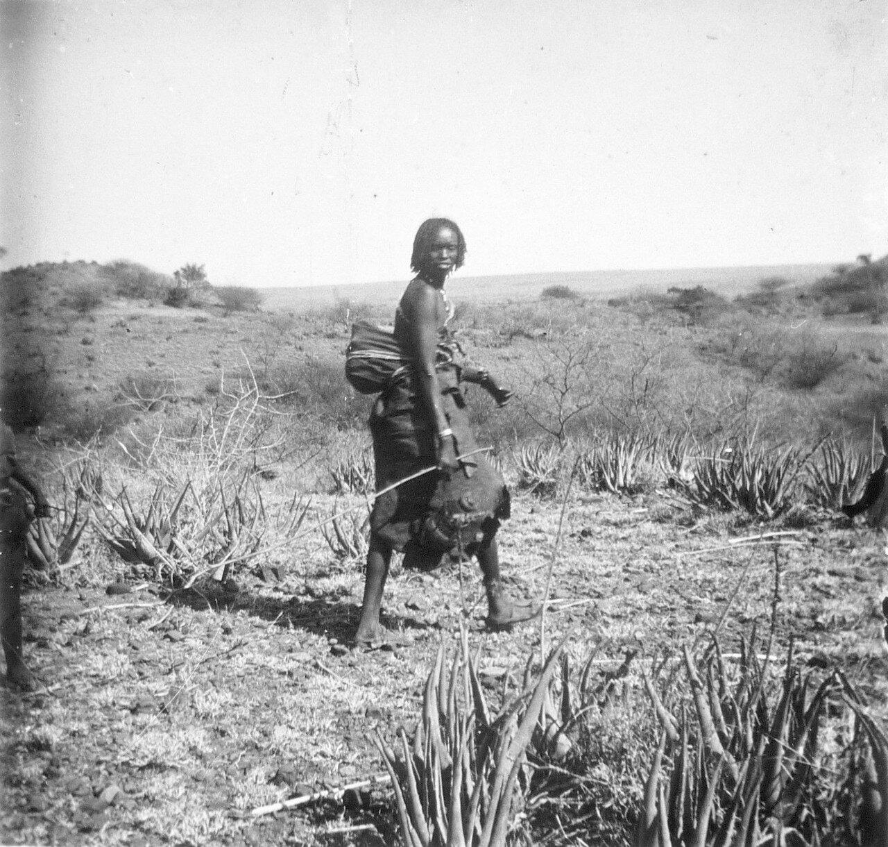 1897. Абиссиния. Женщина данкали на дороге Джибутти - Аддис-Абеба