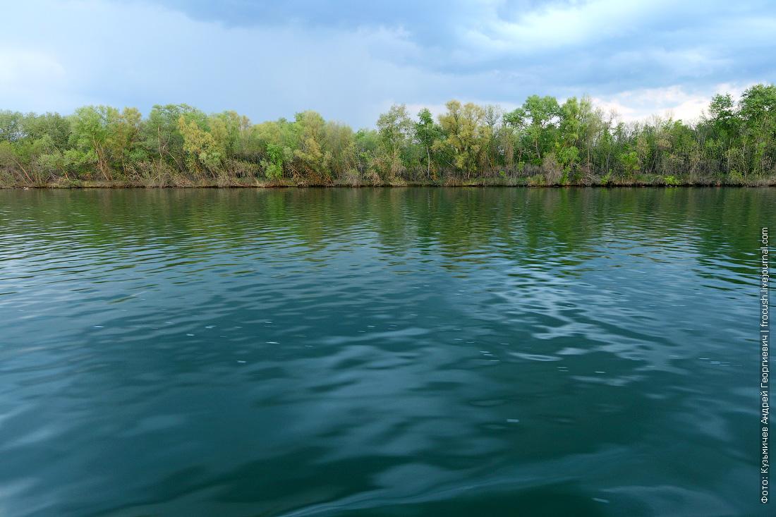 зеленоватая вода в реке Дон