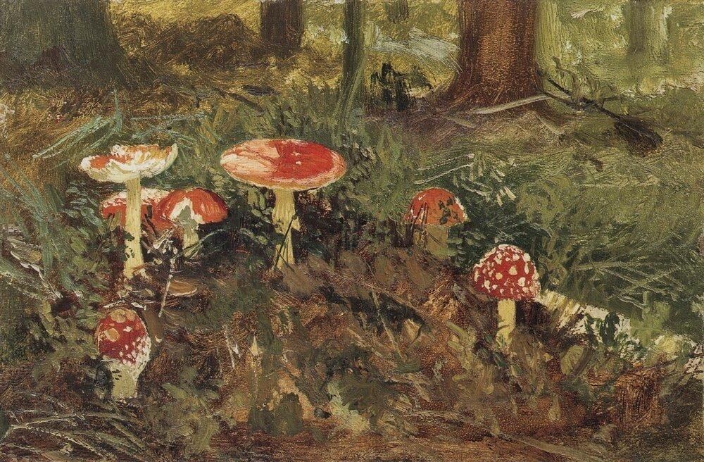 Мухоморы.Этюд 1878-1879 12,8х19,6.jpg