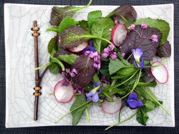 Свежие салаты с дикорастущими травами