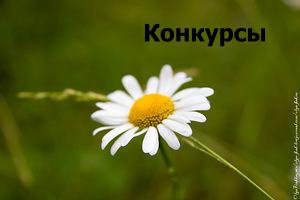 0_fce5d_e39b2945_M 2014-05-16 16-47-40 2014-05-16 16-47-46.jpg
