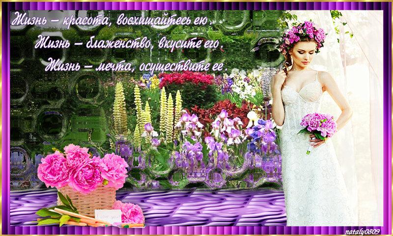 http://img-fotki.yandex.ru/get/9743/193639546.6b/0_17e46d_56826917_XL.jpg