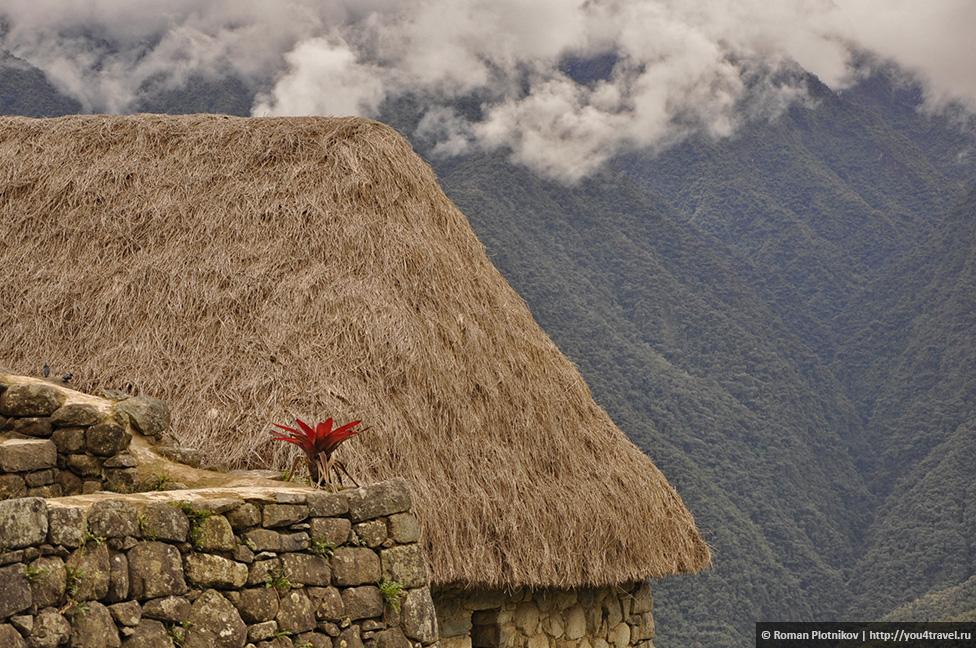 0 168de8 cccc8c5a orig Как добраться и как купить билеты в Мачу Пикчу в Перу