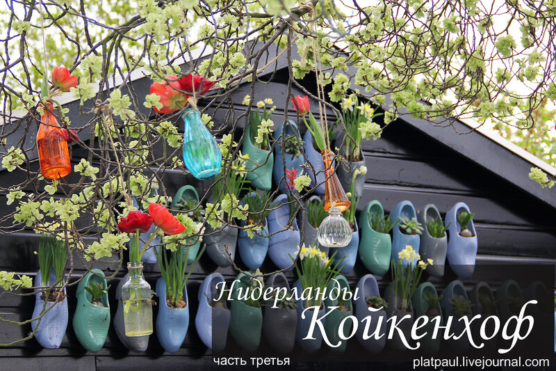 Койкенхоф