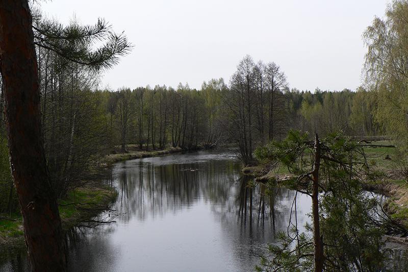 река моча нижегородская область фото