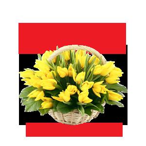 http://img-fotki.yandex.ru/get/9743/97761520.118/0_81891_c0df54c2_orig.png