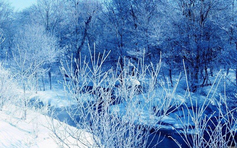 http://img-fotki.yandex.ru/get/9743/97761520.12e/0_81cf6_3cf8f022_XL.jpg