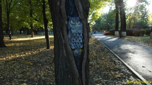 Ростовская осень